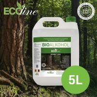 Биотопливо к биокаминам ECOline 5л. с ароматом ЛЕСА